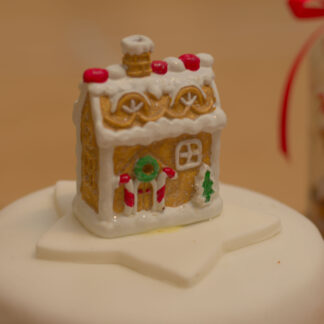Fully-iced Christmas Cake